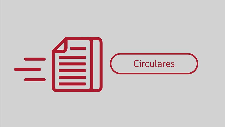 Circular por Sistema de Tarjeta Virtual o de Verificación On Line