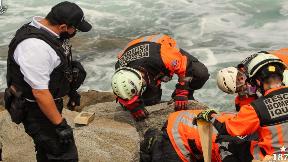 Bomberos de Iquique rescataron a can atrapado en un roquerío de Playa Bellavista