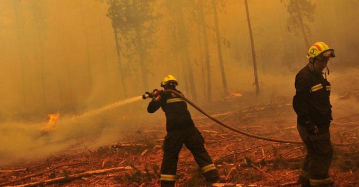 Conaf y Bomberos suscriben alianza para reforzar combate de incendios forestales