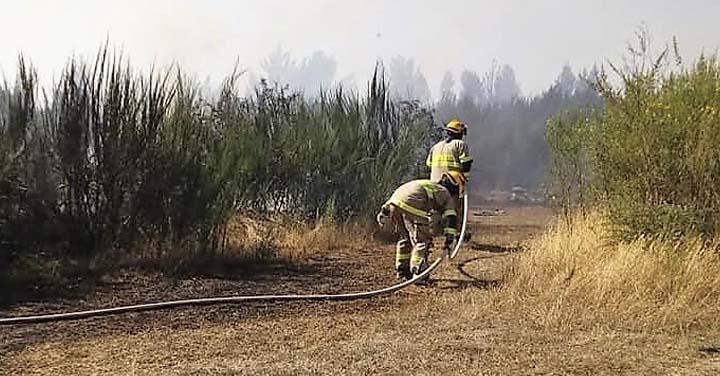 Tres emergencias simultáneas movilizaron a Bomberos de Cañete