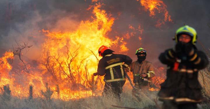 Miércoles 12 de septiembre: transmisión online entrega de equipamiento forestal en la Región de O'Higgins