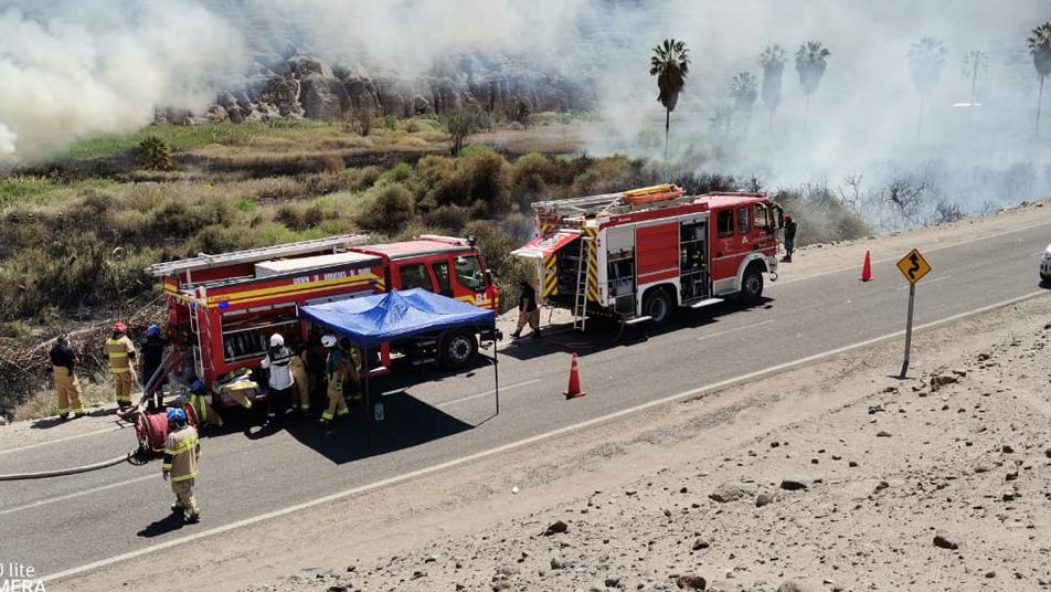 Incendio en pastizales movilizó a Cuerpos de Bomberos de la región de Tarapacá