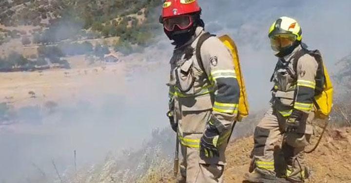 Alarma de incendio forestal en sector La Pataguilla