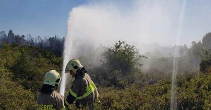 Bomberos trabajan en combate de incendios forestales en las regiones del sur del país