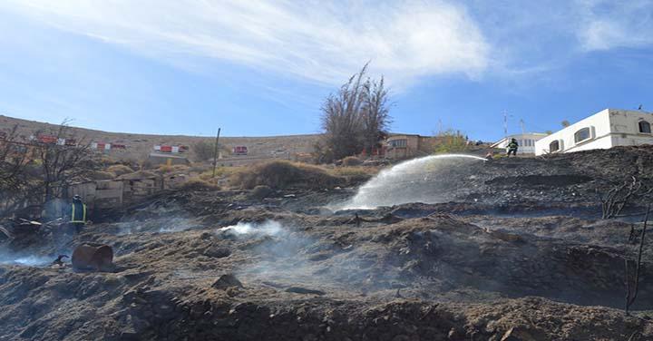 Incendio en pastizales movilizó a cuatro Cuerpos de Bomberos de Tarapacá